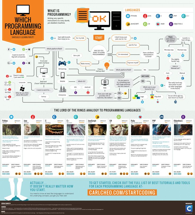 Here's a nice infographic that might advise you on which programming language you should learn first!