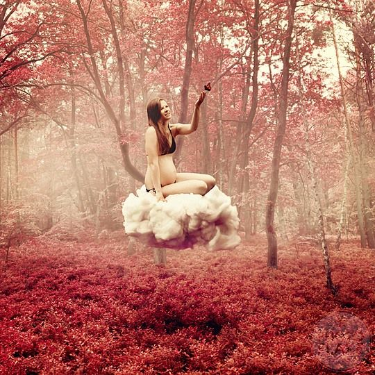 Photo Manipulations by Anja Stiegler Air.