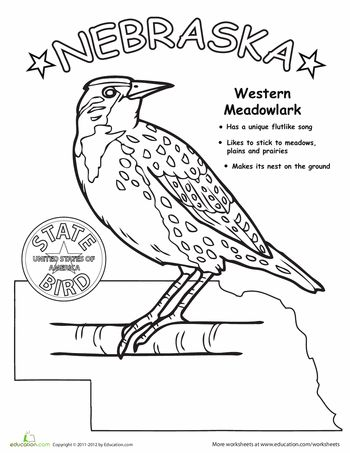 17 best images about mt rushmore on pinterest coins for Meadowlark coloring page