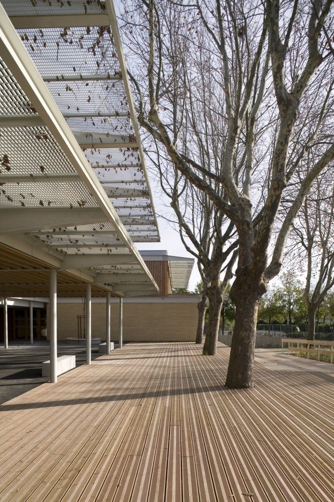"""The Jean Carrière Nursery School. A large deck surface with trees erupting out of it creates a great space for running and biking freely. And creating a """"buffer"""" zone between the indoors and outdoors."""