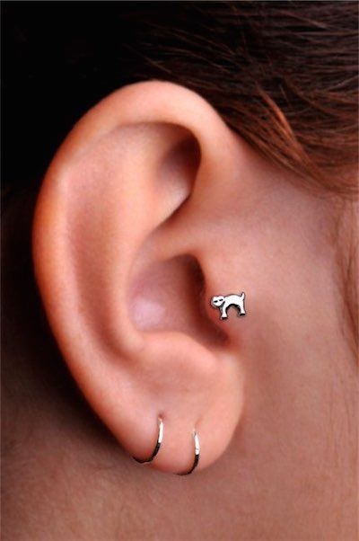 36 Unique Tragus Piercing Examples with Tragus Info Guide