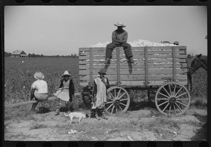 Cotton pickers waiting to have their cotton checked, Marcella Plantation, Mississippi Delta, Mississippi. 1939. Library of Congress.