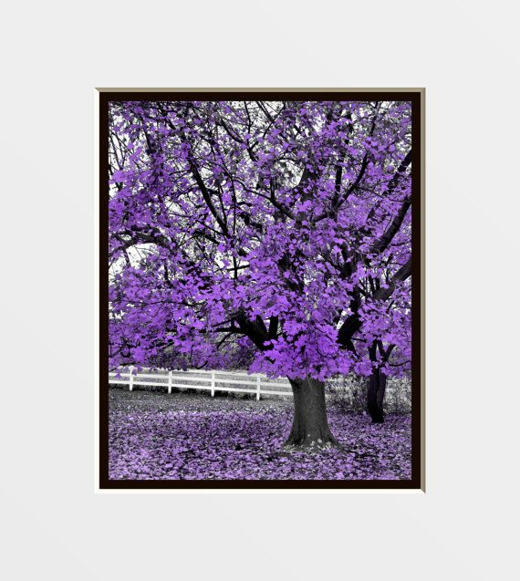 Purple And Gray Wall Art 35 best my room images on pinterest | gray walls, purple gray and