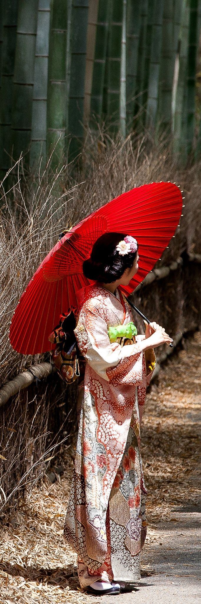 Bamboo Geisha - A random encounter with Japan's rare and dwindling Geishas. Arashiyama, Kyoto ~ by Kory Carpenter