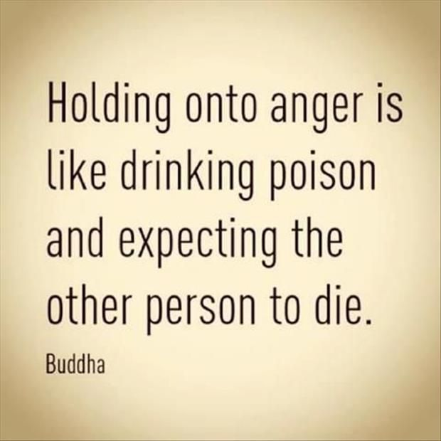 Wow what a great way to think of anger!