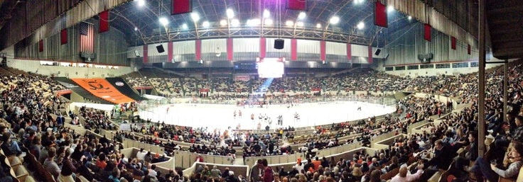 14 Best The Cow Palace Images On Pinterest Palace