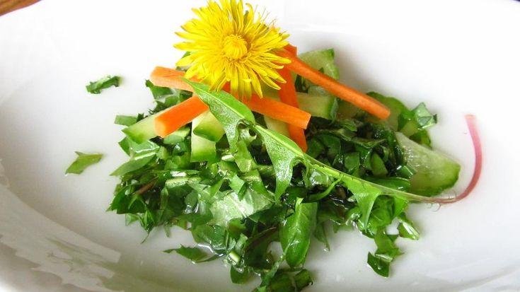 Pampeliška - Smetanka lékařská - odstraňuje z těla škodlivé látky, ovlivňuje činnost jater a čistí krev. V lidovém léčitelství se používá hlavně ve formě čaje z kořene rostliny nebo listu. Mladé lístky lze upravit jako salát na podporu trávení, je extra jednoduchý a objevíte novou – hořce sladkou chuť.