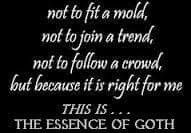 Gothic Quotes and Sayings: This is...The Essence of Goth.