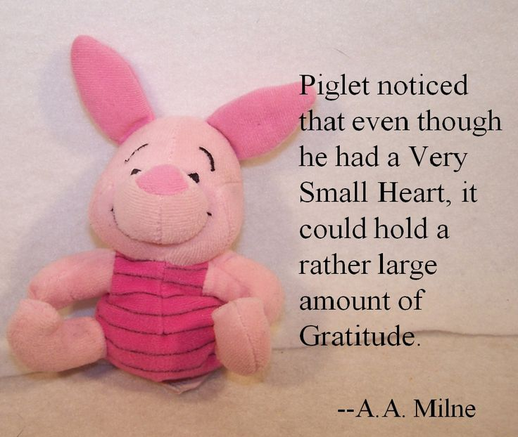 Piglet And Winnie The Pooh Quotes: 17 Best Images About Hundred Acre Wood On Pinterest