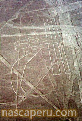 Lineas de Nazca ! http://www.southamericaperutours.com/peru/8-days-great-peru-northern-kindong.html
