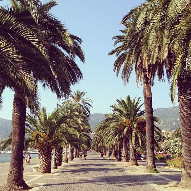 Small town by the sea, great pubs and pizzerias, not to mention its close location to the Cinque Terre ♥