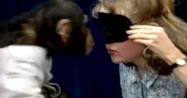 Young Women Who Think They Are Participating In A Kiss Test For Lip Balm Meet Some Playful Primates.