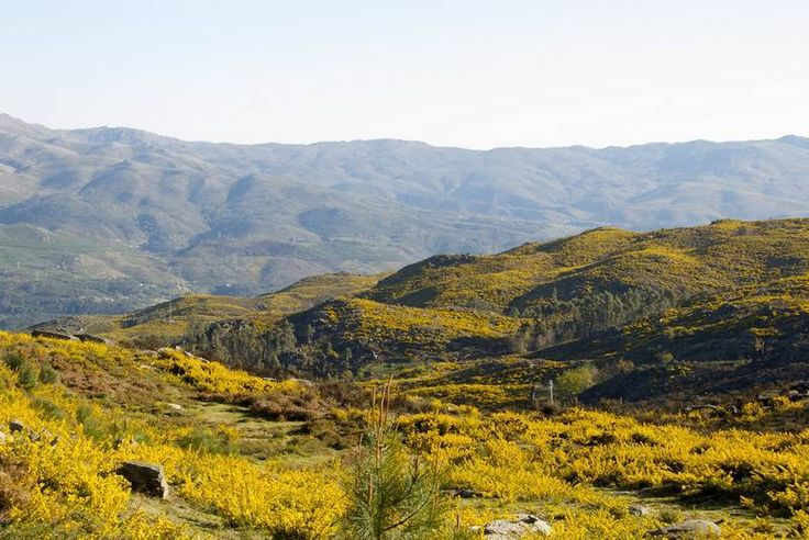 Peneda-Gerês National Park  is one of the places to visit if you're going to northern Portugal.