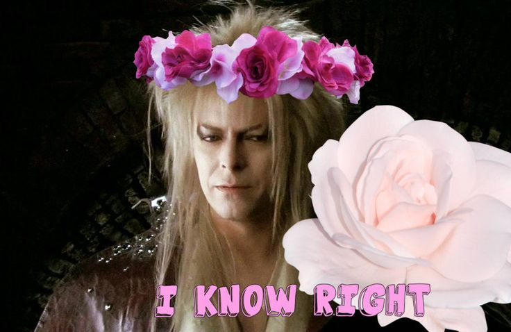 "For Everyone Whose Sexual Awakening Was Caused By David Bowie In ""Labyrinth"""