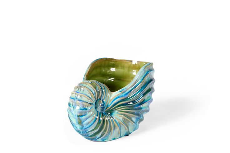 Shell dish and home accessories from Becara