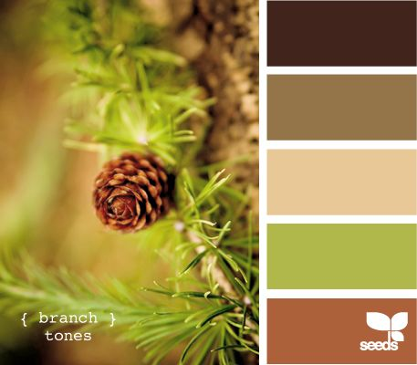 branch tones: Branch Tones, Living Rooms, Design Seeds, Color Palette