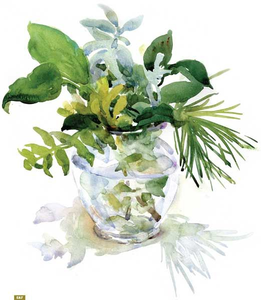 A simple floral arrangement can be the perfect subject for beginner still lifes. Check out these steps to set up and paint a floral still life, like this foliage bouquet.