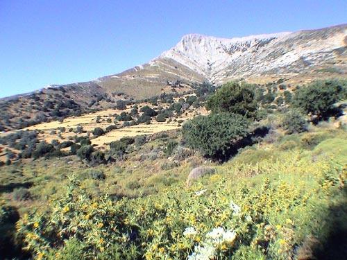 Naxos landscape