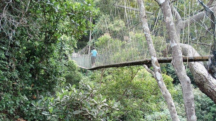 7. TAMAN NEGARA NATIONAL PARK BRIDGE- Titiwangsa Mountains, Malaysia