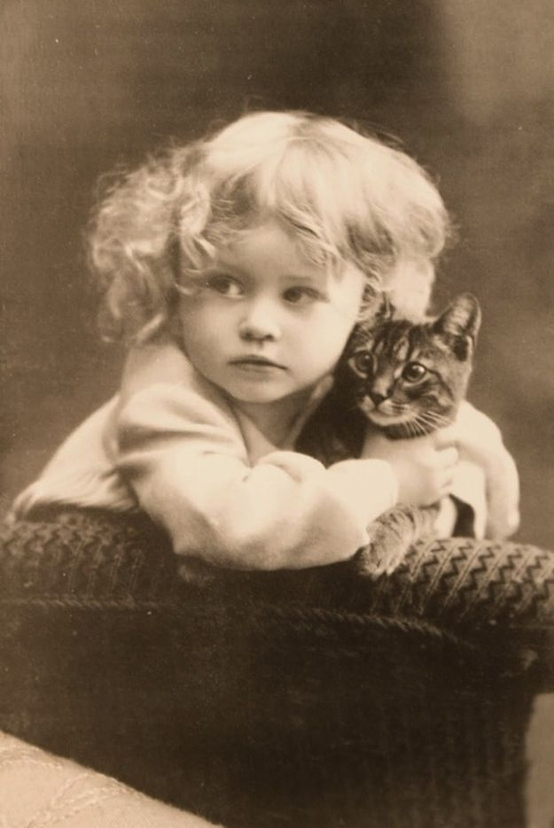 """43 Vintage Photographs That Prove Cats Are A Girl's Best Friend"" aaannndd that completes this board, i guess."