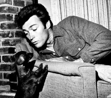 Clint Eastwood and a puppy.Puppies, Dogs, Famous People, Doxie, Hollywood, Dachshund Artsandcrafts, Clinteastwood, Dachshund Celebrities, Clint Eastwood