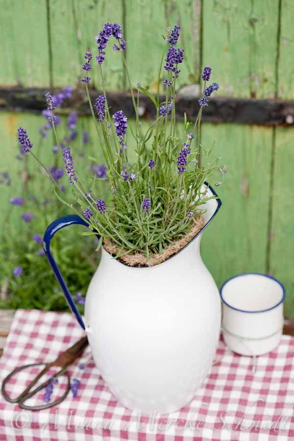 Lavendel | blomsterverkstad | Sköna Hem