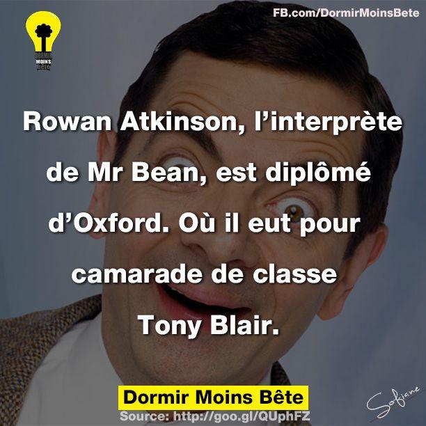 Rowan Atkinson, l'interprète de Mr Bean, est diplômé d'Oxford, où il eut pour camarade de classe Tony Blair.