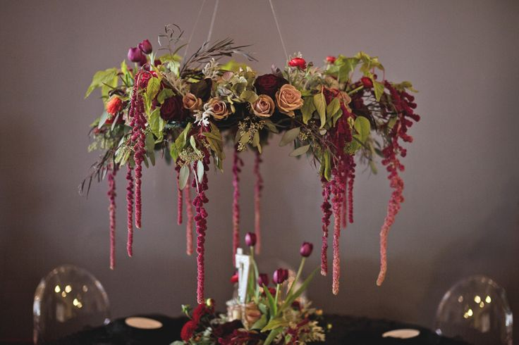 Best images about amaranthus preserved on pinterest