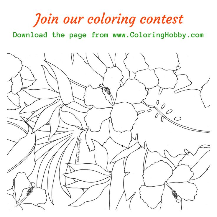 50 best my coloring pages images on pinterest