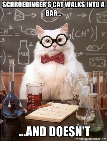 Chemistry Cat | Shroedinger's cat walks into a bar....and doesn't.