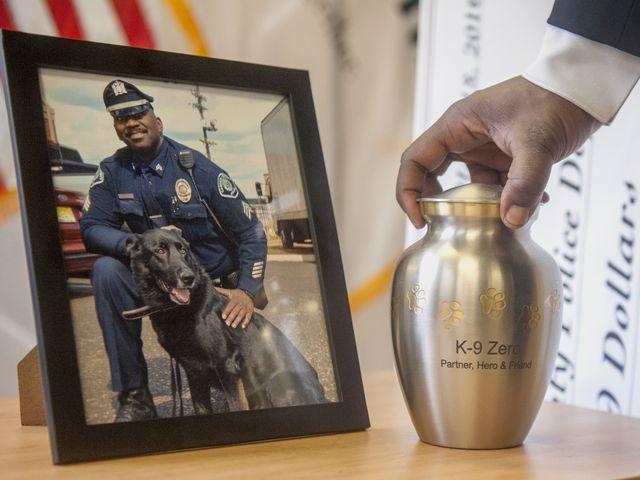 Camden County Police introduce new K9