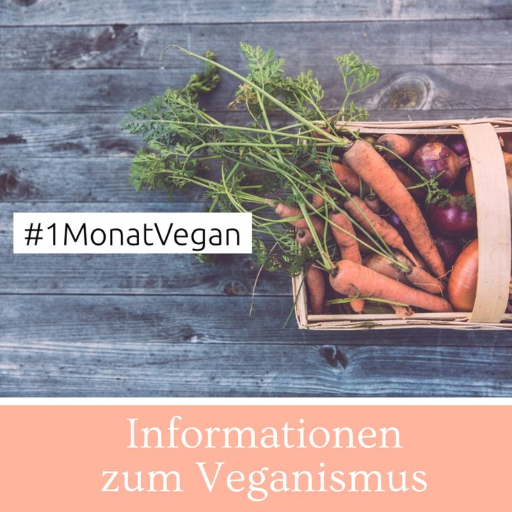 Informationen zum Veganismus, Infografiken