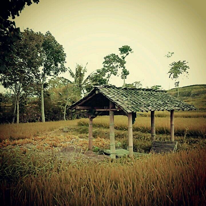 Farmer's safe house 2