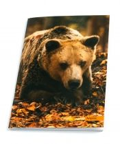Bear Andreas. Notebook featuring the bears which are hosted in ARCTUROS' Brown Bear Sanctuary.