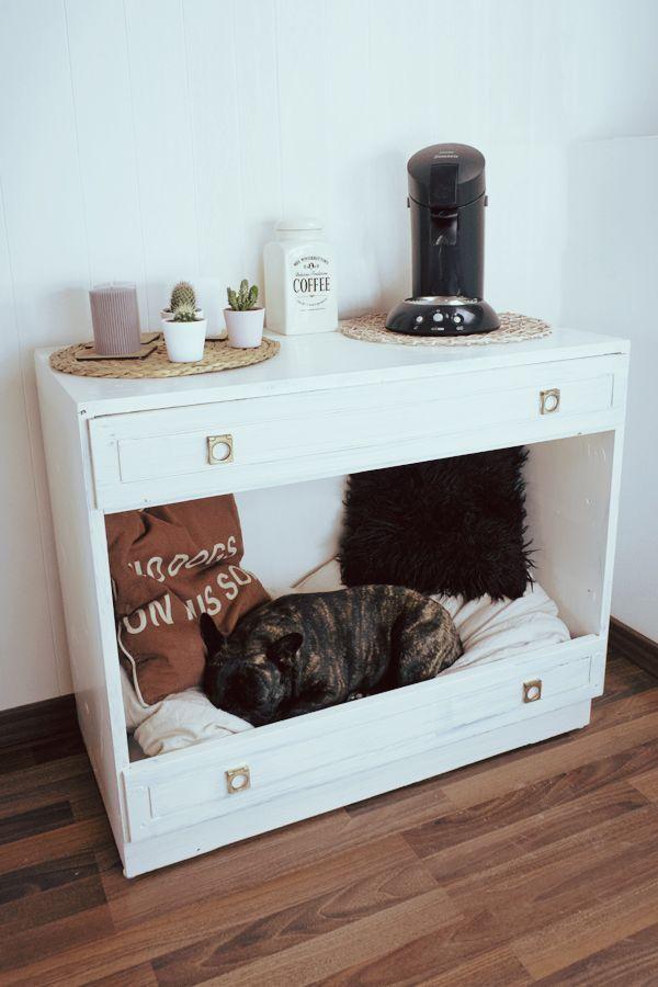 Jeder Hunde- oder Katzenbesitzer weiß das: In jedem Zimmer sind Körbe und Deko …   – DIY