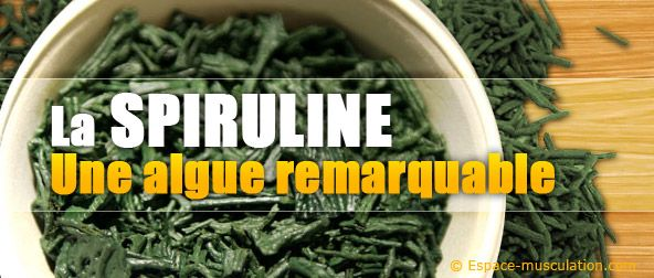 Spiruline, une algue remarquable