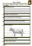 #Kuh / #Rind #Biologie 63 Fragen zu dem Thema: Kuh / Rind #Arbeitsblaetter #Uebungen #Aufgaben •Klasse •Ordnung • #Abstammung •Rinderrassen •Nahrung • #Aussehen •Größe •Gewicht •Weide- und Stallhaltung • #Stallformen •Nachwuchs •Stier / Bulle / Ochse •4 Mägen •Milch •63 Fragen