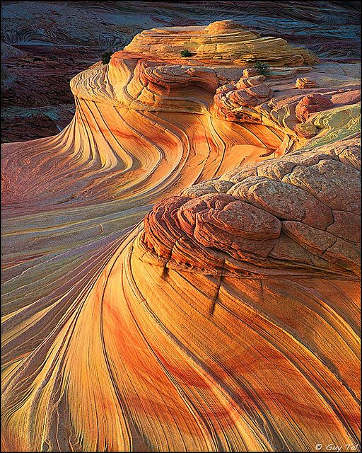 Sandstone Magic by Guy.Tal, via Flickr.  Coyote Buttes, Utah