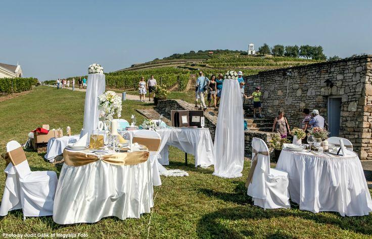SEPTEMBER MARKET: WEDDING EXHIBITION http://www.tokajtoday.com/2016/09/14/september-market-wedding-exhibition/