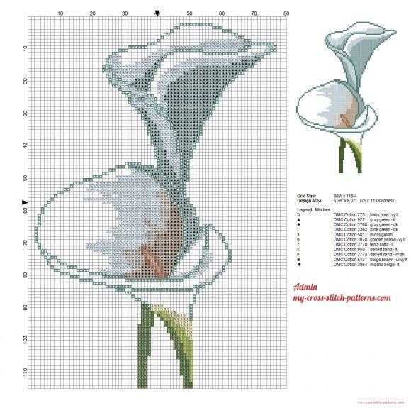 Image Result For Cross S Ch Flowers Garden Pinterest