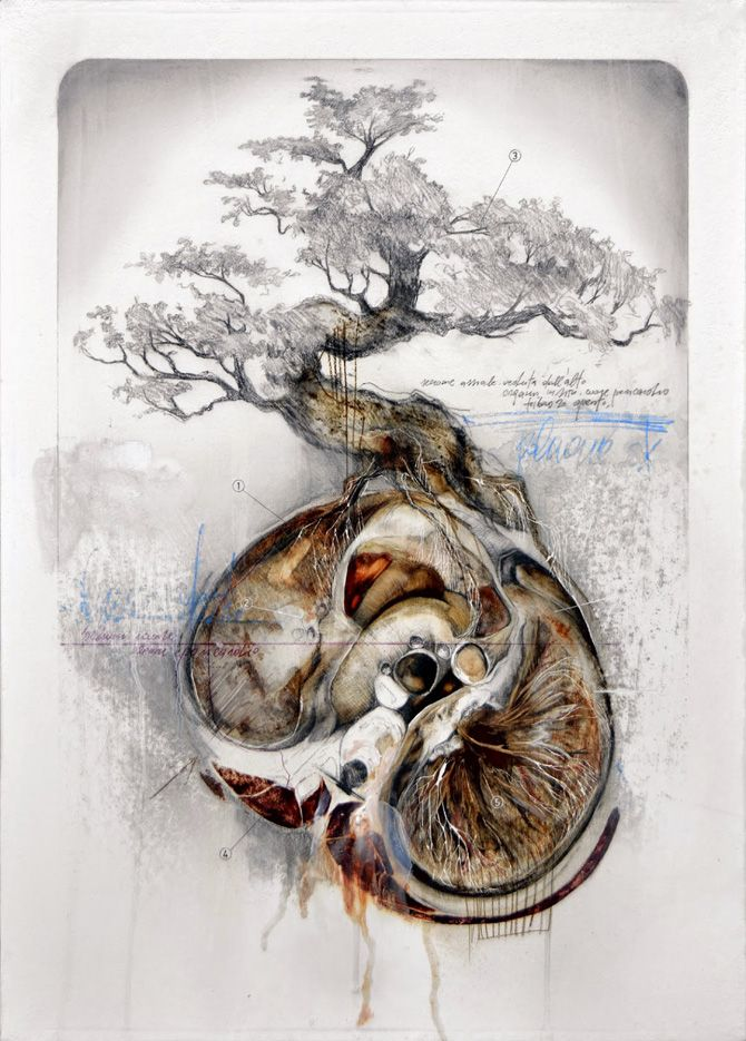 Another piece by my favourite artist Nunzio Paci. I love the bonsai tree emerging from eith the womb or (a kidney?). It is dynamic and has strong movement throughout, the eye is taken around the painting. I love how he incorporates graphite with oil paint and leaves it partially sketched in. The pops of colour make it insteresting for the eye. -VL