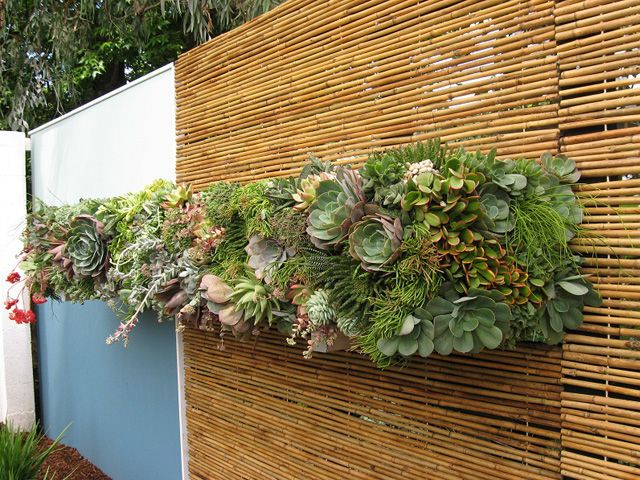 Compact Garden Ideas modern garden pictures Find This Pin And More On The Compact Home Garden Space Saving