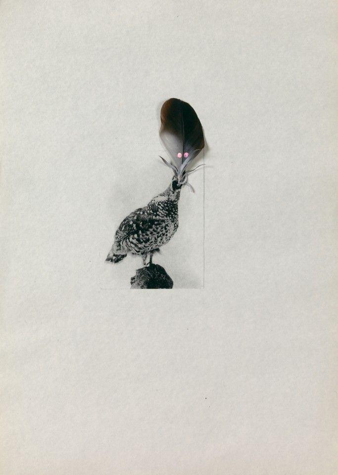 Several birds fly away when they understand it (16) - Petrit Halilaj - Artistes - galerie kamel mennour, 75006 Paris
