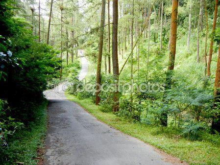 Road to Gejayan Village — Stock Photo © photostocknatonny #57331847