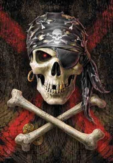 Anne Stokes Pirate Skull Crossbones Cloth Poster Textile Flag Art Tapestry New Pirate Art
