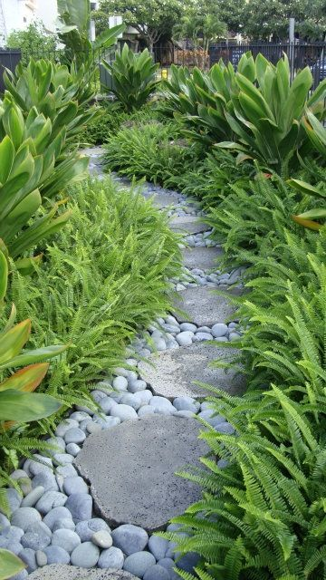 I like the river rock  A simple clean landscape with only two different  plants  Kupukupu fern and Emerald green ti combined with stepping stones  and river  729 best stone path ideas images on Pinterest   Landscaping  . Garden Paths And Stepping Stones. Home Design Ideas