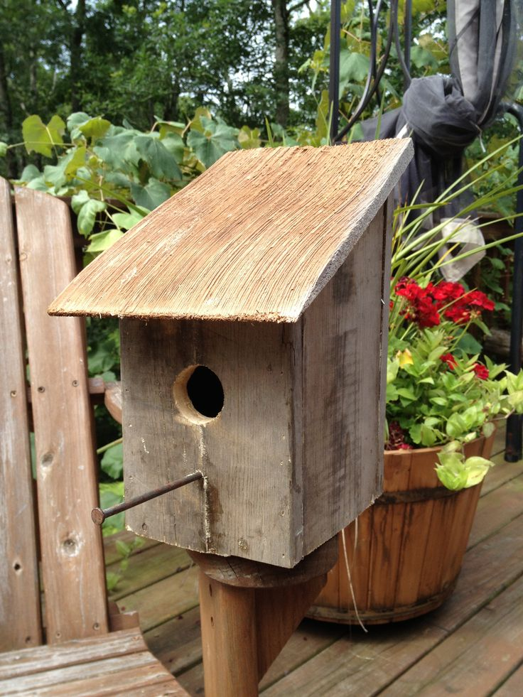 ca20080c462438c6b7dae2fe5b521c8e--diy-pallet-pallet-wood Pallet Wood Bird Houses Plans on wooden bird house plans, build bird houses plans, wood pallet birdhouse, diy bird houses plans, wood duck bird house plans,
