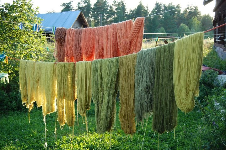 yarns dyed with plants by Pata-noita.fi