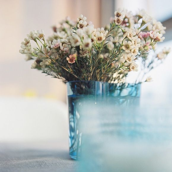 ouramazingjinpark: wax flowers in the blue Alvar Aalto Vase