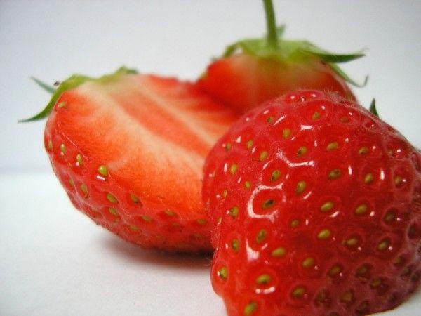 El cultivo de la fresa por primera vez puede darle más de un quebradero de cabeza al jardinero novel pero como en todo hay que insistir y no darse por vencido a la primera contrariedad. Vamos a tra…